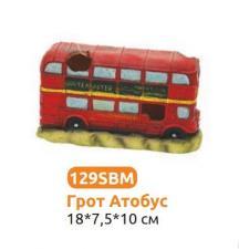 Грот Автобус