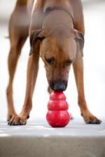 Игрушка для собак KONG Classic L большая 10х6 см