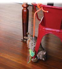 Игрушка-дразнилка KONG с гибким креплением для кошек Connects