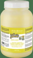 Шампунь для любого типа шерсти против раздражений и перхоти Iv San Bernard Fruit of the Grommer Ginger&Elderbery