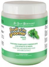 Восстанавливающая маска для любого типа шерсти с витамином В6 Iv San Bernard Fruit of the Grommer Mint