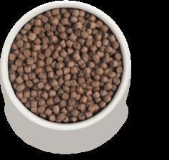 Корм для собак GRANDORF (индейка и рис)