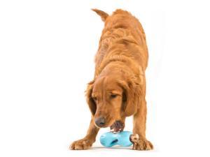 Игрушка для собак Zogoflex Qwizl