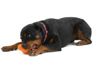 Игрушка для собак Zogoflex Tux