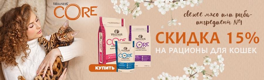 Wellness Core скидка 15%